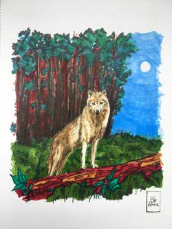 Entre Lune et Loup - Available in shop