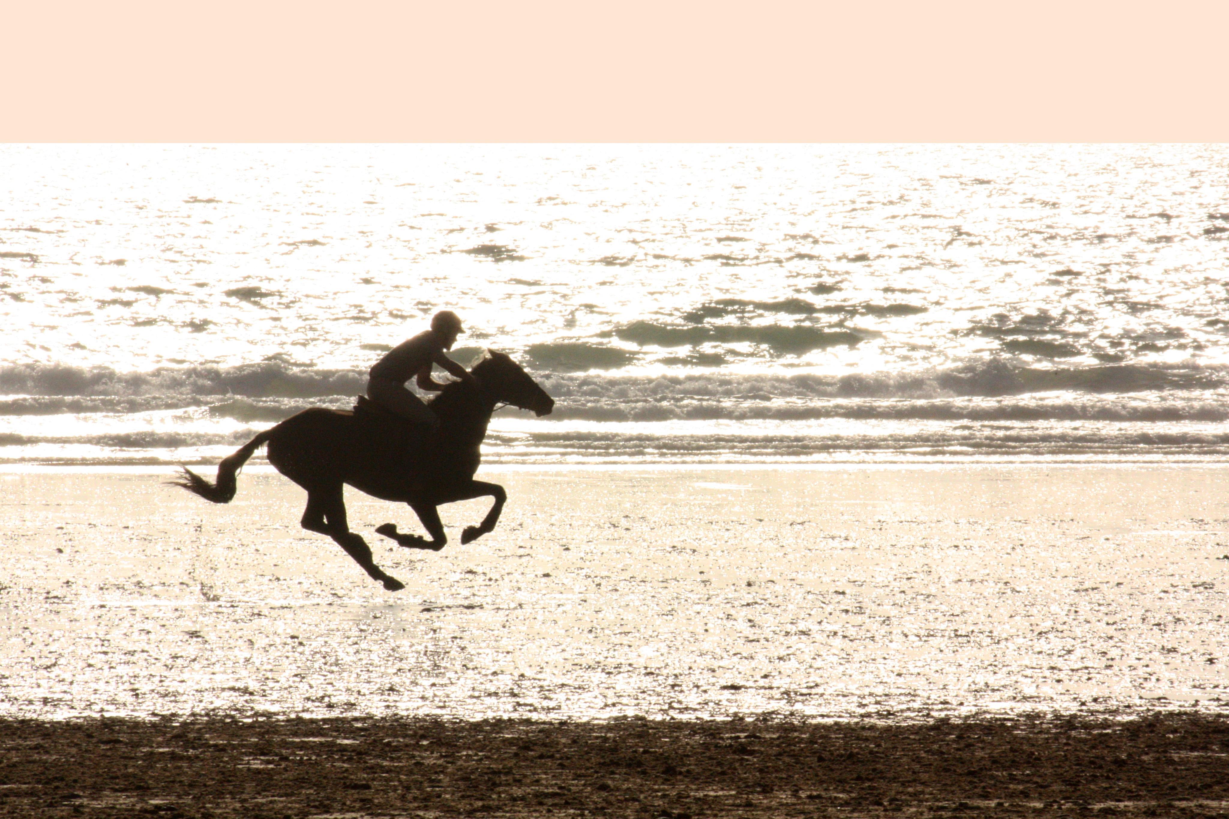 Courir sur la plage (70€)