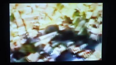 Screen shot 2012-01-03 at 7.41.36 AM.png