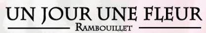 unjourunefleur.png