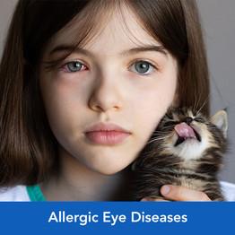 eye_diseases.jpg