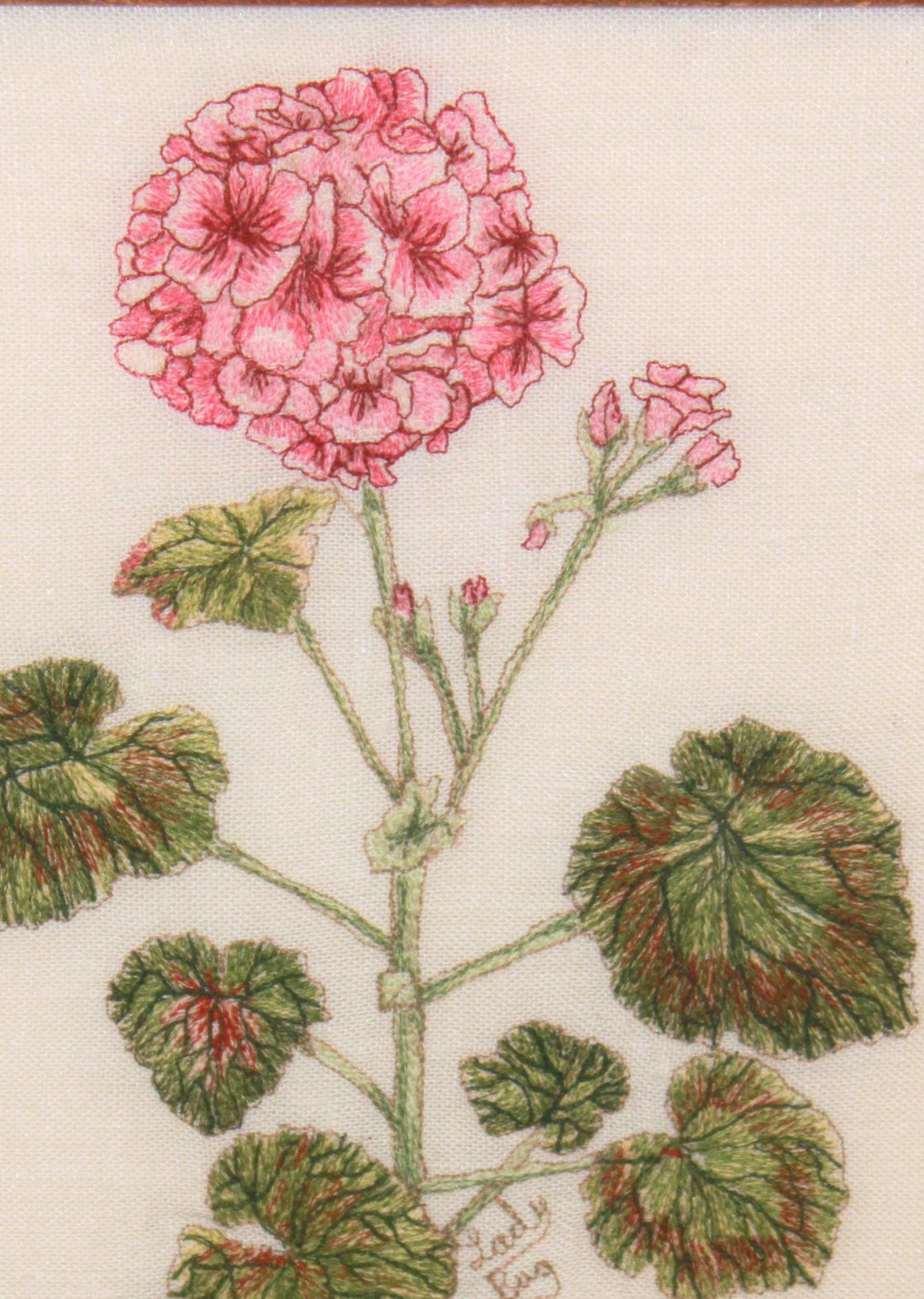 AinB016 quilt 23 24 25 Turner Carlson Stowe embroidery entry. Turner geranium-001 thumbnail1