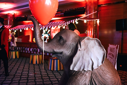 Elephant Prop Children's Parties