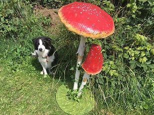 Mushroom Toadstool Prop Hire