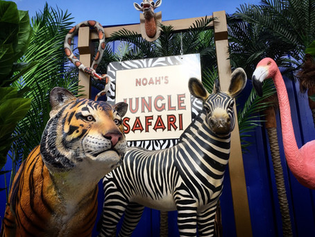 Jungle Safari Prop Hire for Children's Parties.