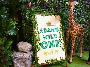 Wild One Party Signs