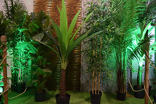 Tropical Foliage and up-lighting