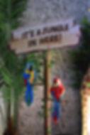 Parrots Statue Hire