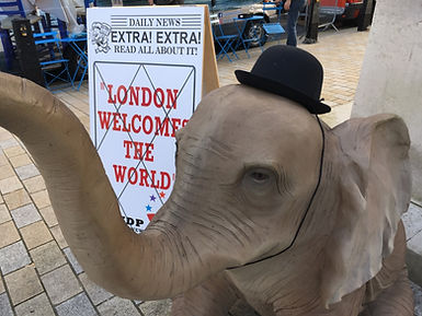 elephant prop hire london welcomes the w