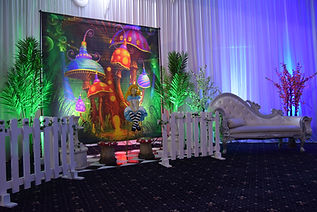 Photo Wall_ backdrop Hire