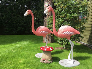Pink Flamingo & Toadstools Children's Bi