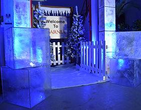 winter wonderland ice cubes