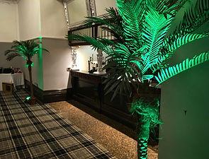 Palm Tree Prop Hire
