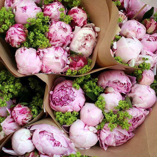 Peonies in shades of pastel pink
