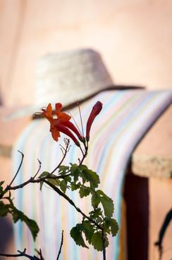fleur et chapeau