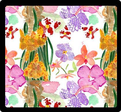 Scuticaria steelii orquídeas