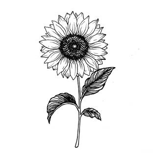 tattoo_sonnenblume_jule.png
