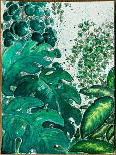 pflanzen_aquarell_fuer_jule.jpg
