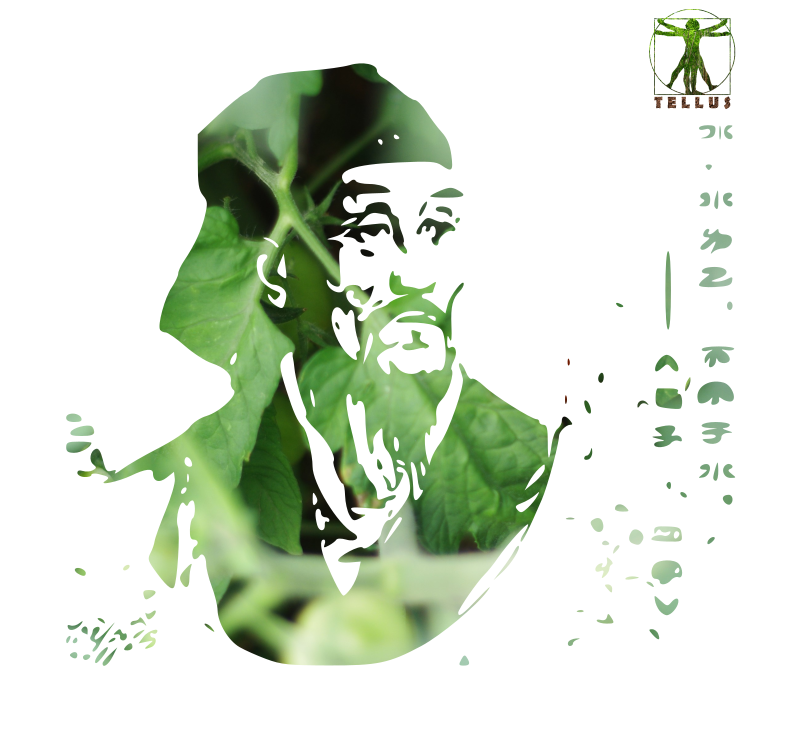 Portrait de Xun Zi penseur asiatique par Tellus Permaculture