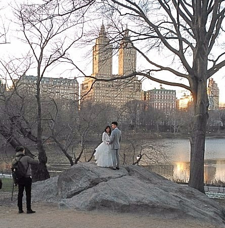 Very cold bride and groom in Central Park