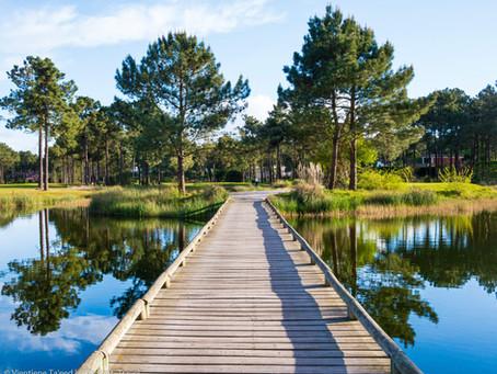 Gallery 29: Silver Coast in Lockdown, Portugal 2020