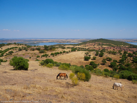 The Sounds of the Alentejo