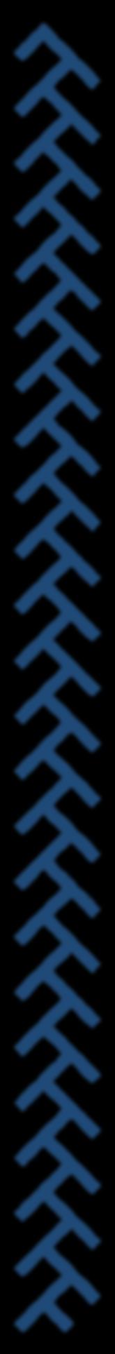 TimeTraver Trading Logo