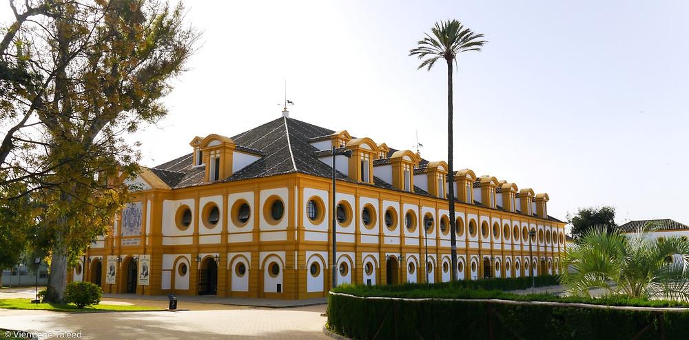 Escuela Alta, Jerez