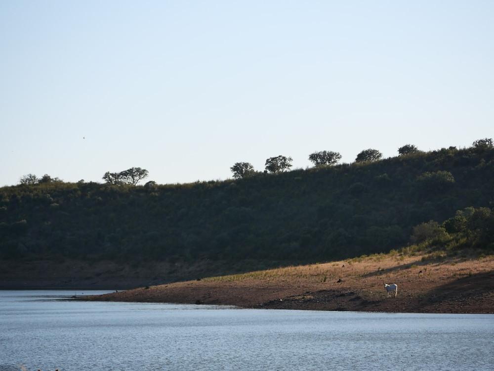 Barragem Redondo Portugal