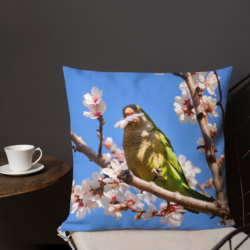 A taste of what our e-shop offers: pillow, bags, mugs and posters (Radiant.Travel or visit our merch page)