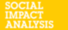 Social Impact Analysis - Report for The Loomba Foundation