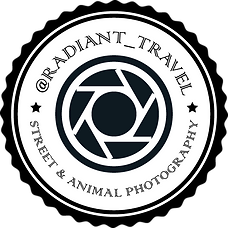 Radiant Travel Logo - 500px.png