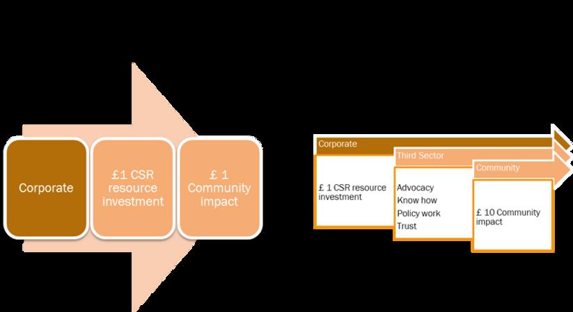 CCEG Corporate Intervention NGO Model