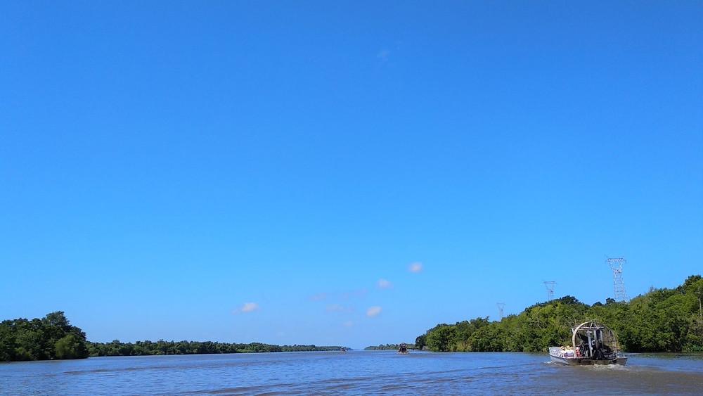Louisiana Fanboat Swamp Tour