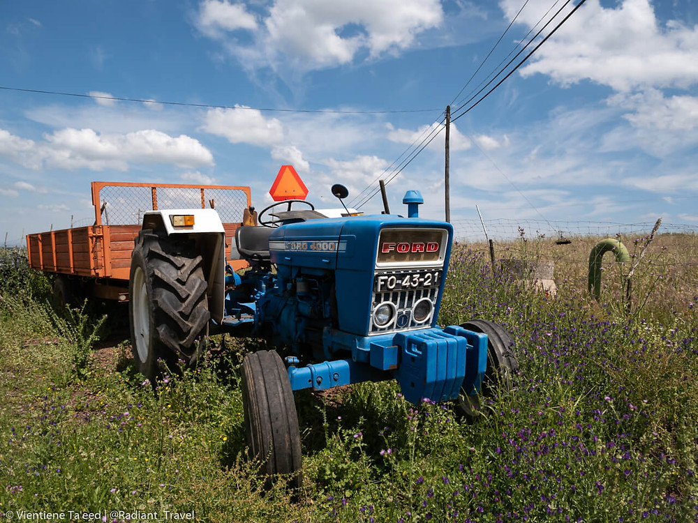 Vintage Ford tractor