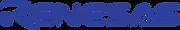 Renesas Processor Solutions
