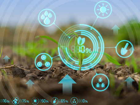 AI - Good for Food Production and the Health of the Planet!