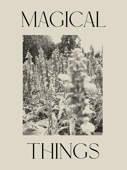 MAGICAL THINGS