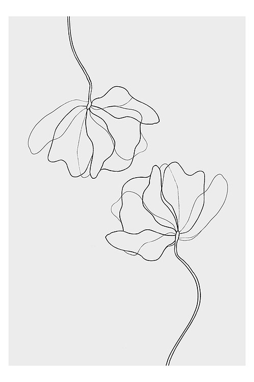 FLOWER LINE DRAWING NO. 2