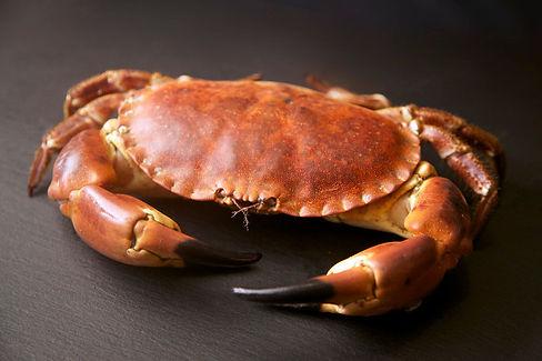 Brown_Crab_Raw1.jpg