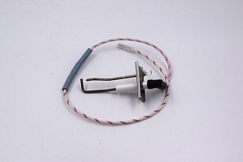 65116556 elettrodo