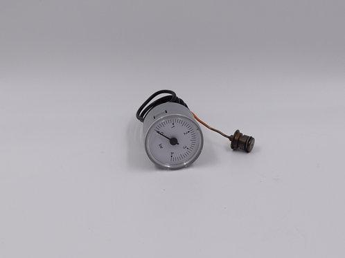 R2468 idrometro