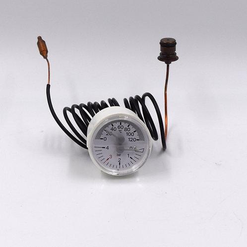 R10030294 termoidrometro