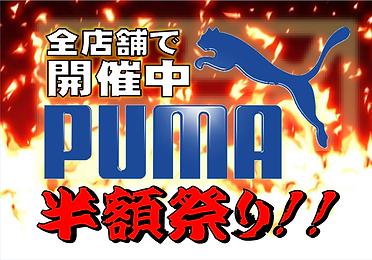 PUMA1.png