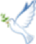 dove-41260__480.png