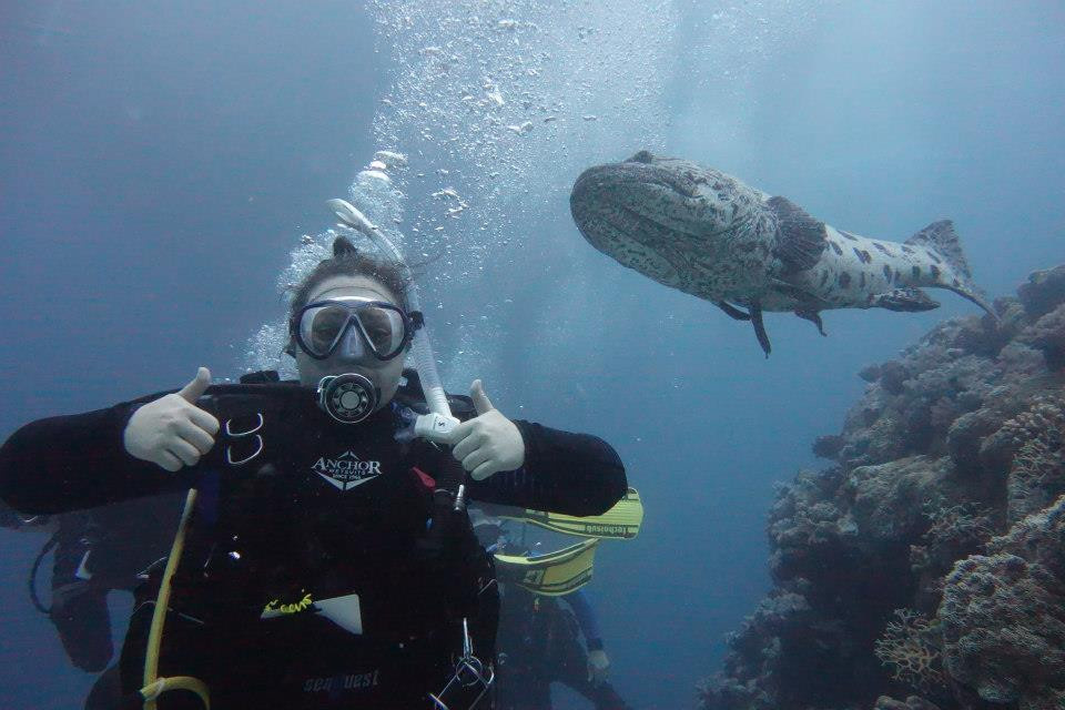 Diving with Mike Ball at Cod Hole, on the Great Barrier Reef - Life Itinerant