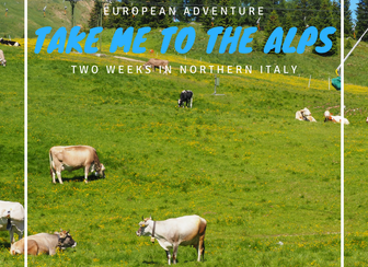 Take me to the Alps - the Swiss Border