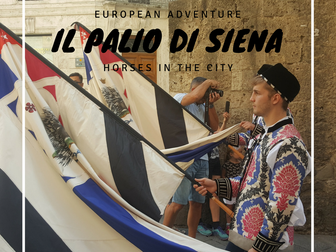 Il palio De Siena- horses in the city