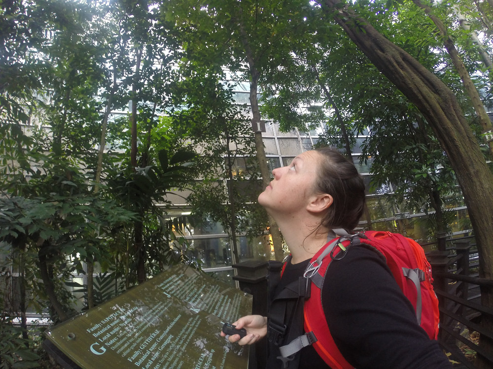 Looking forward to new adventures - Malaysia - Life Itinerant