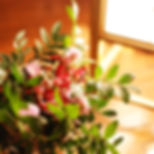 DSC_0188a[288] - Copy.jpg